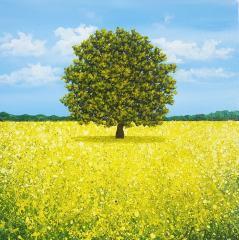 Yellow Lone Tree
