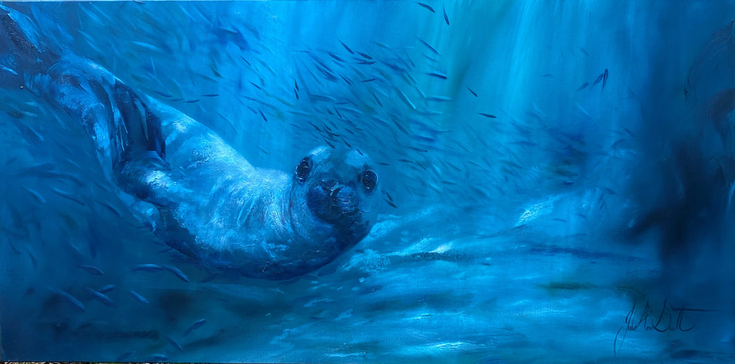 Sealion in the Deep