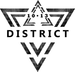 District 1013