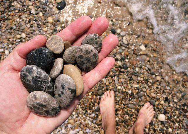 5 Tips for Finding Petoskey Stones