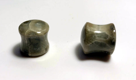 Petoskey Stone Plugs - Side View