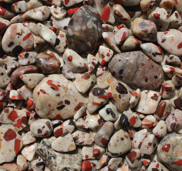 puddingstone collection