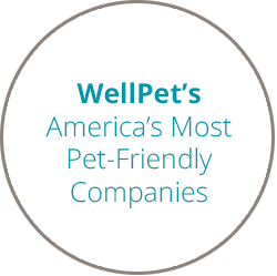 Wellpet Most Pet Friendly Workplaces