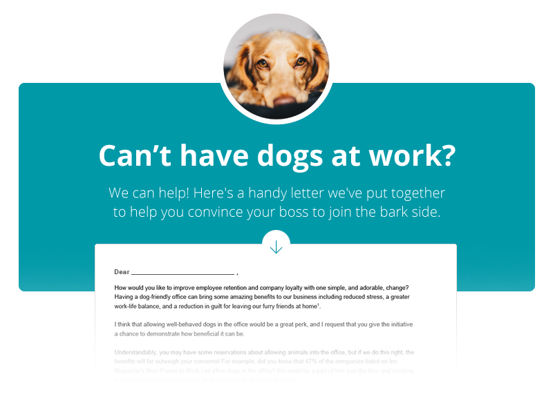 Download the Dog Friendly Office Proposal Letter