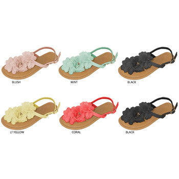 Wholesale Women's Thong Sandals with Chiffon Flower Embellishment (1 Case)