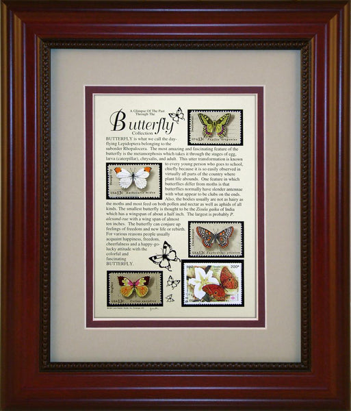 Butterflies - Unique Framed Gift