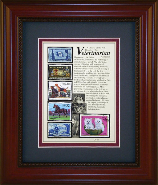 Veterinarian - Unique Framed Gift
