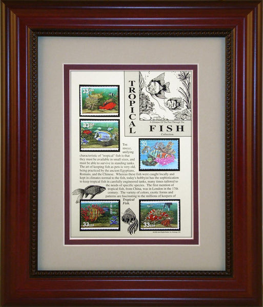 Tropical Fish - Unique Framed Gift