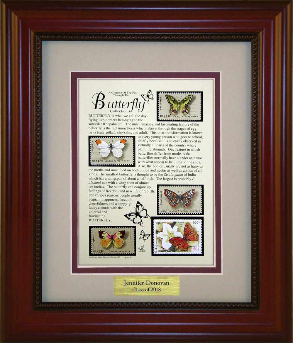 Butterflies - Personalized Unique Framed Gift