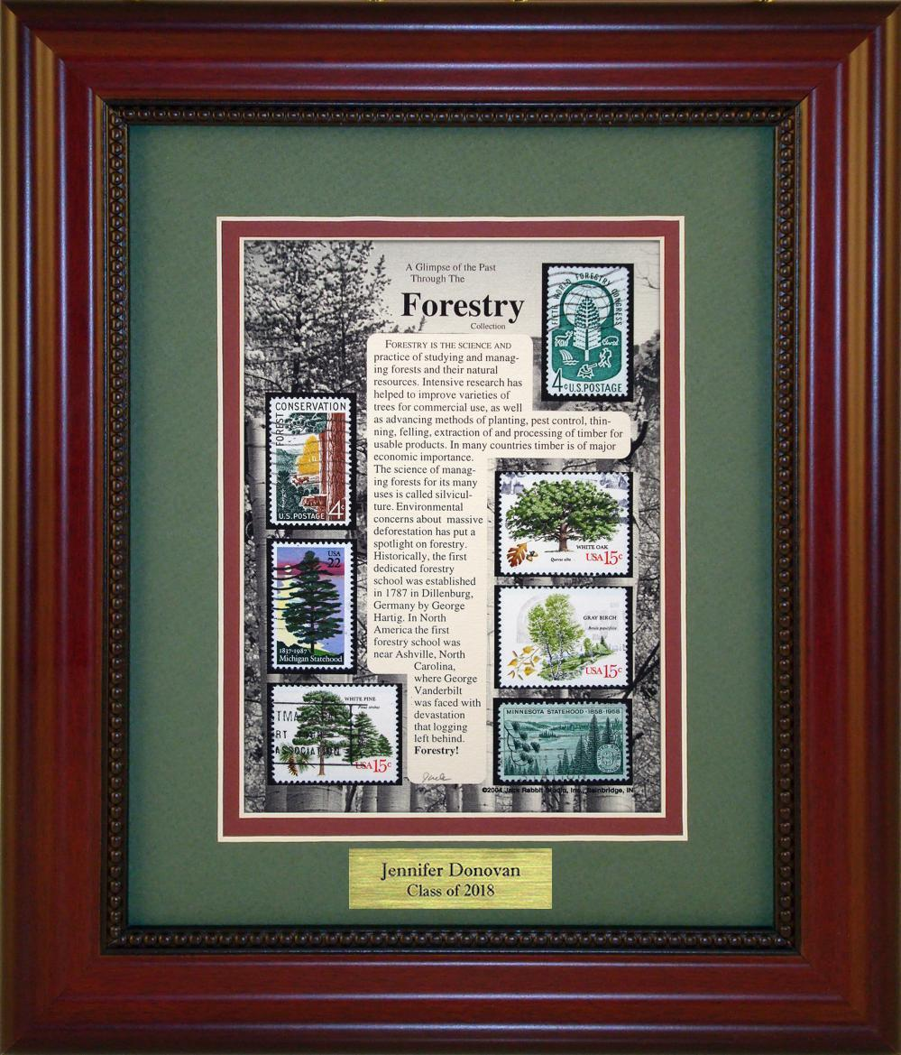 Forestry - Personalized Unique Framed Gift