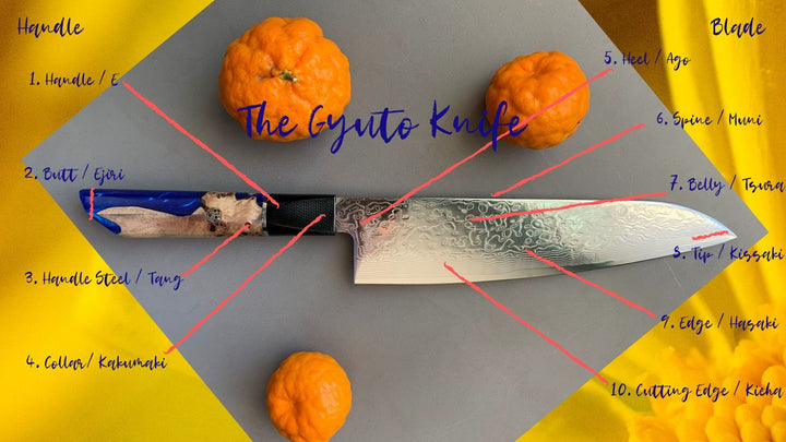 The Anatomy of the Gyuto Knife