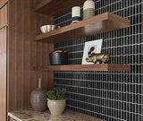 Black trapezoid mosaic tile accent wall with dark wood shelves and potted plants on counter
