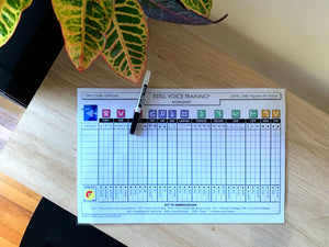 Giant EVT Laminated Worksheet