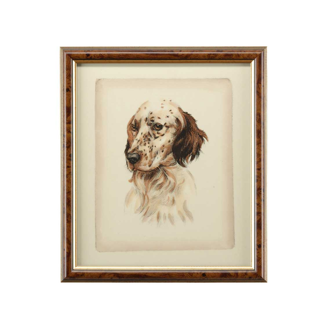 Danchin Setter Hand Colored Print Brown and Gold Frame
