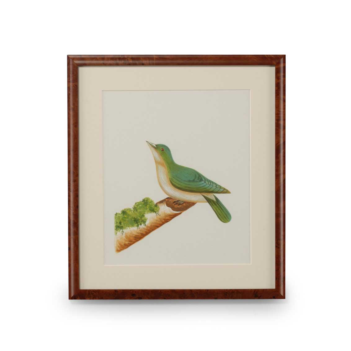 Lisa Kahn Collection Flights of Fancy XII watercolor print