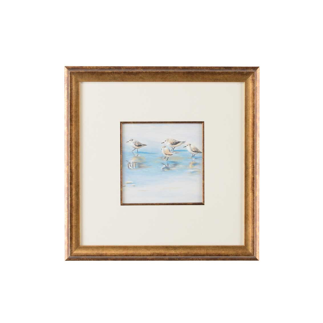 Lisa Kahn Collection Sand Piper I watercolor print