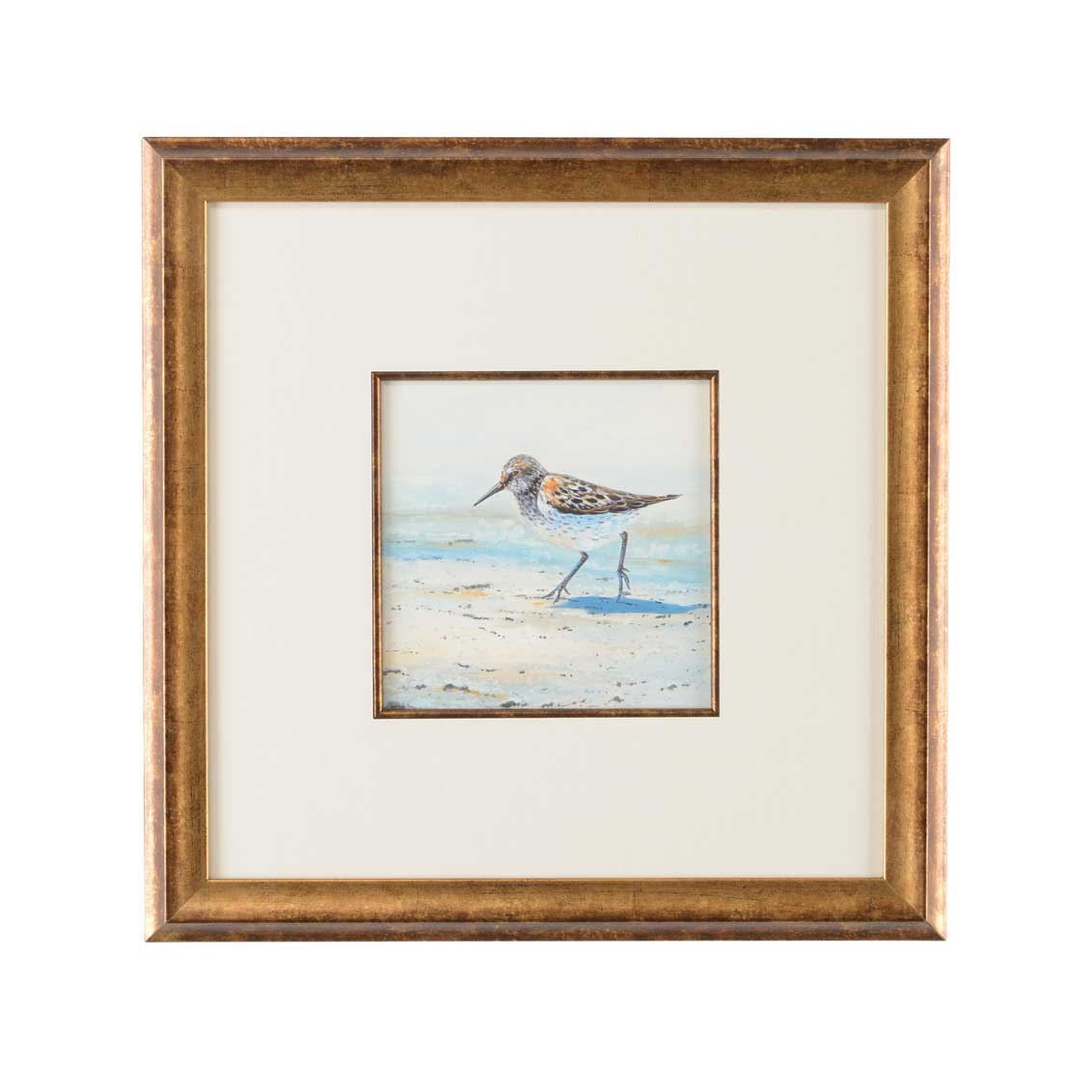 Lisa Kahn Collection Sand Piper II watercolor print