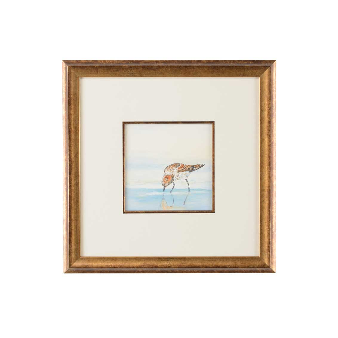 Lisa Kahn Collection Sand Piper III watercolor print