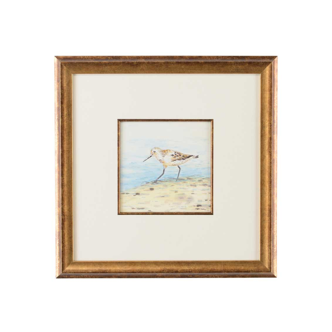 Lisa Kahn Collection Sand Piper V watercolor print