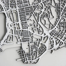 Hong Kong Street Carving Map (Sold Out)