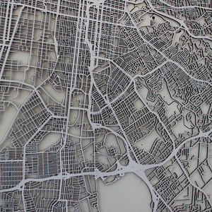 Louisville Street Carving Map (Sold Out)