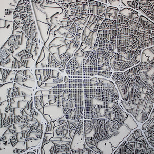 Raleigh Street Carving Map (Sold Out)