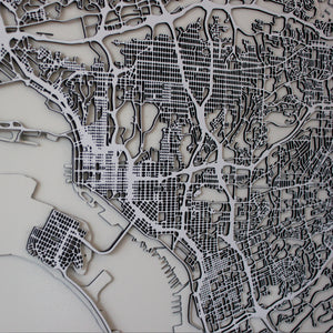 San Diego Street Carving Map