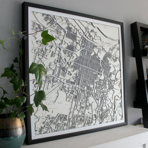 Savannah Street Carving Map