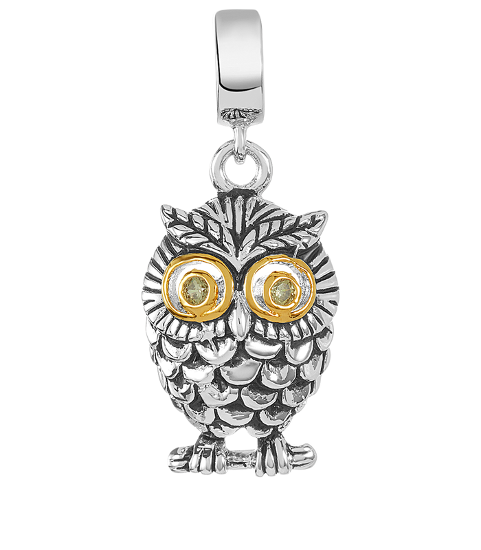 Owl charm for use on DBW interchangeable charm bracelets.