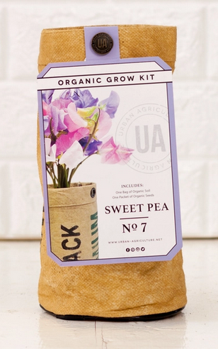 Sweetpea Grow Kit