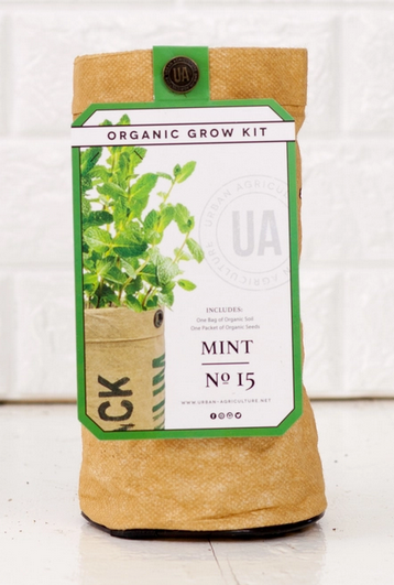 Mint Grow Kit