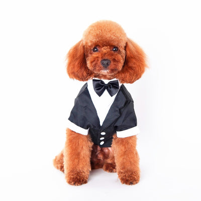 Gentlemen Wedding Dresses - Pet Bargain Supplies