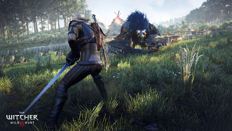 Witcher silver sword monster fighting