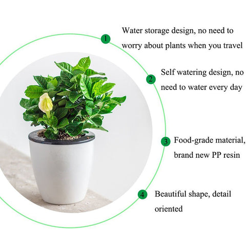 3Pcs Self Watering Flower Pot (Various Sizes) & 10Pcs Decorative Mushroom as Gift