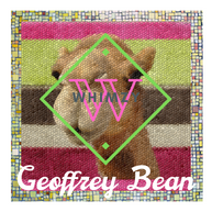 Whimzy Tees Releases Geoffrey Bean Collection
