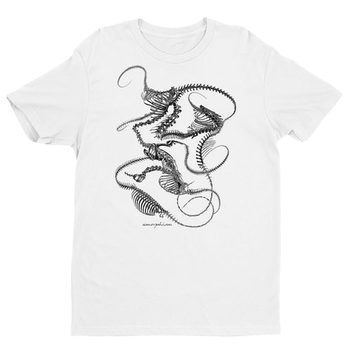 Skeletal Plexoid T-Shirt (White)