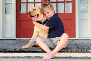 5 Tips to Avoid the Back-to-School Doggie Blues