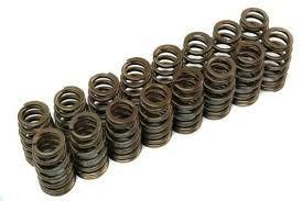 Duratech Cosworth valve Springs