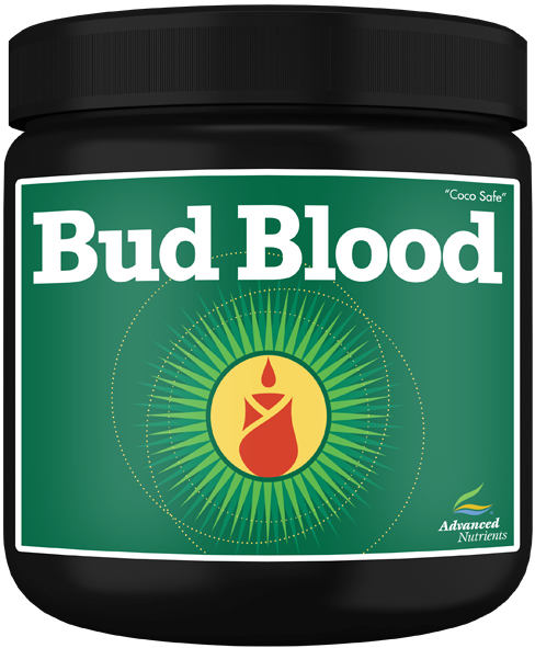 Bud Blood Powder 300g