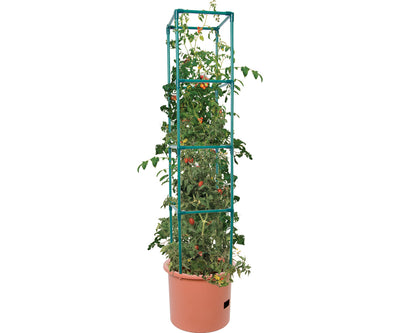 Heavy Duty Tomato Barrel w/Tower (4/cs)