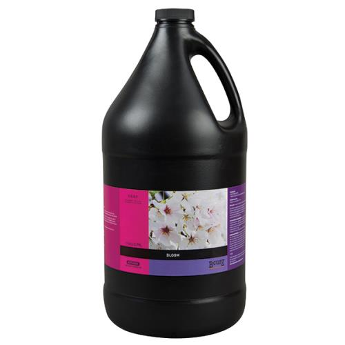 BCuzz Bloom Gallon (4/Cs)