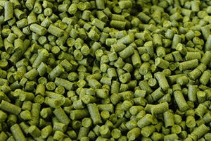 German_Hersbrucker_Hops