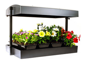 LED - Growlight Garden - Black