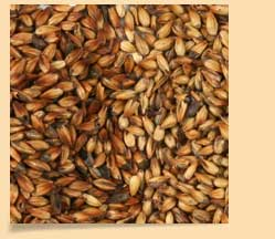 Crystal_Wheat_Malt