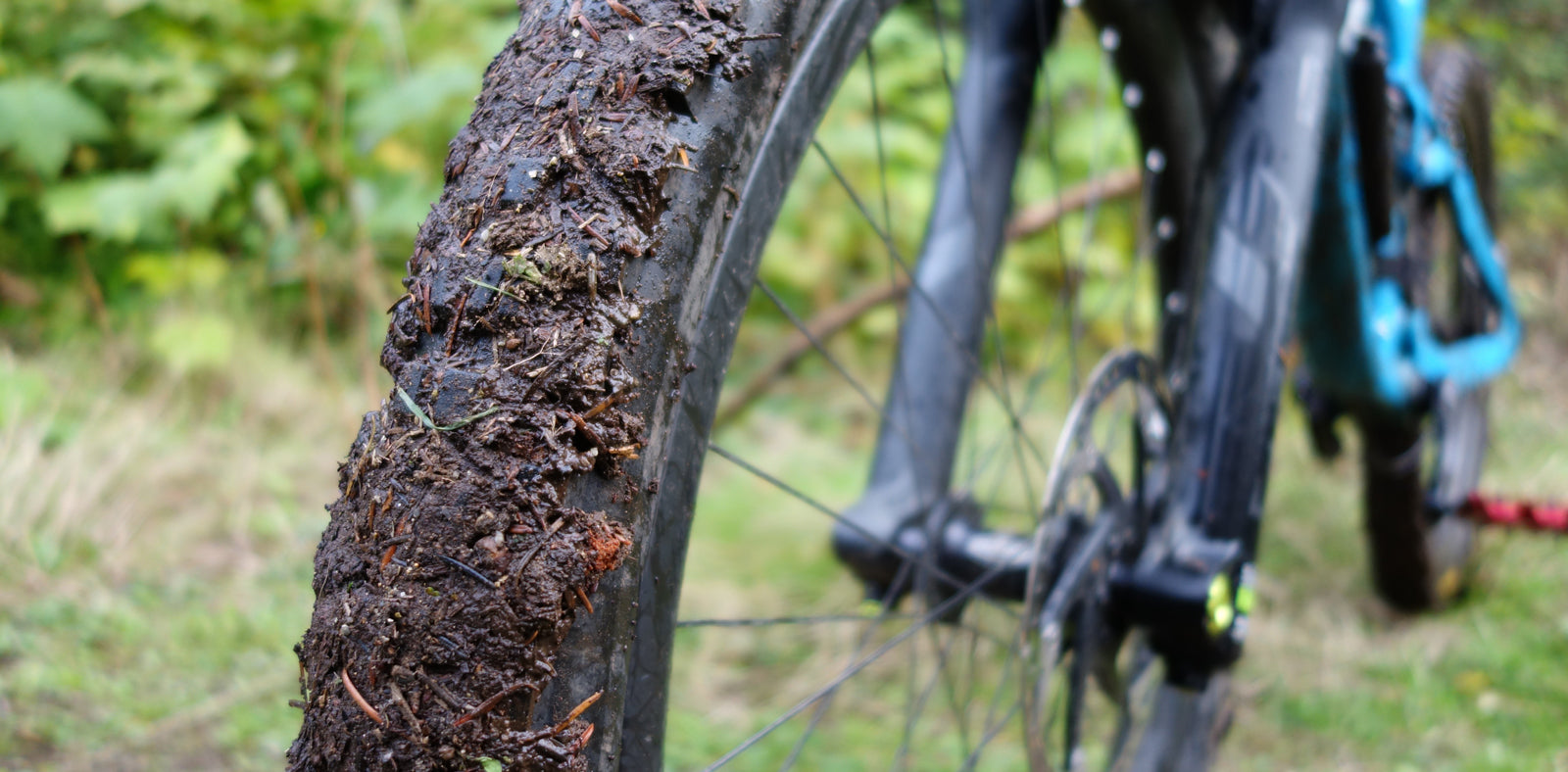 Maxxis Minion DHF in the mud
