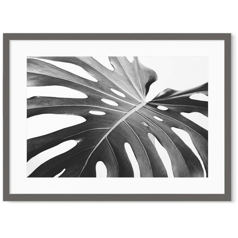 Black and white leaf art prints photography designs