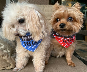 pet bandana dogs