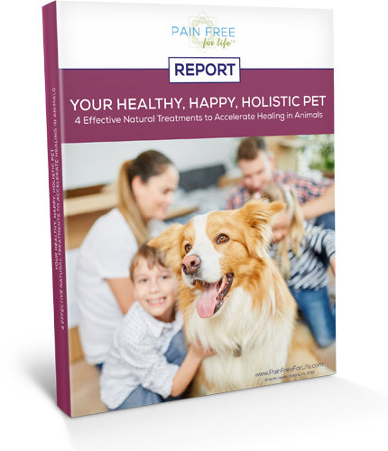 Your Happy, Healthy, Holistic Pet: Natural Treatments for Healing