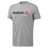Singapore Reebok Men Linear Read Tee