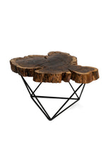 African Acacia coffee table